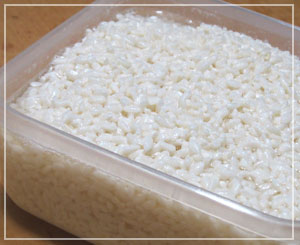初めて作った塩麹