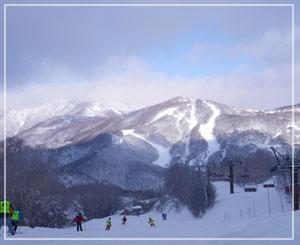 今日の志賀高原。雪質最高♪天気も最高♪