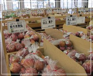 長野のJA直営販売所は、さすがのリンゴの山!