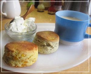 朝御飯はこんな感じで。