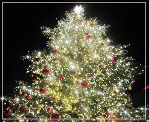 恵比寿ガーデンプレイス、時計広場のクリスマスツリー