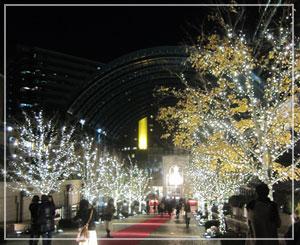 12月の恵比寿ガーデンプレイスのキラキラっぷり