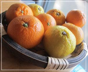 昨日買ってきた柑橘セット。どれも美味しそう♪