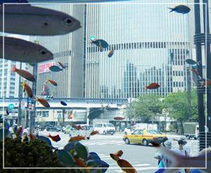 銀座ソニービル前の大水槽。数寄屋橋交差点を魚が泳いでいるように見える不思議な光景。