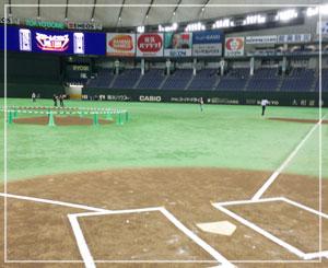 ホームベースにも立てますよー。野球好きにはたまらないのかも。