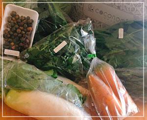 「ココノミ」の野菜がたんまり届きました。正月用に色々とね。
