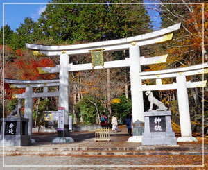 三峯神社に来ましたよ。境内入口には、珍しい「三ツ鳥居」。