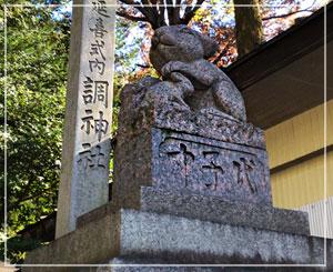 今日は狛犬が兎さんの、浦和「調神社」に来ましたよ。