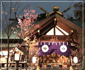 帰り間際、東京大神宮にお参りを。