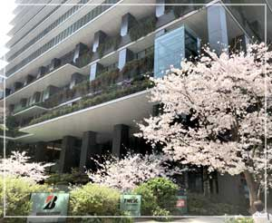 初めて訪れた京橋の東京スクエアガーデン。桜もちょうど見頃できれい。