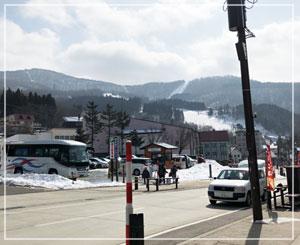 この道路のすぐ向こうがゲレンデなのにこの雪の無さ!