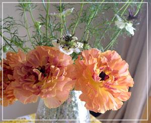 白いお花がキウイっぽいでしょ?と玉緒さん。確かに……!!