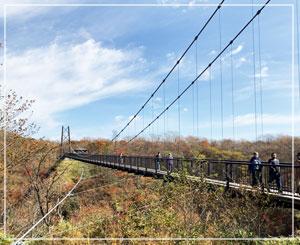 つつじ吊橋。見た目より揺れますよ……?