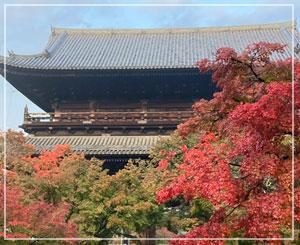 南禅寺三門。でっかーい……!
